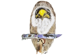 Eagle Head Hanging Wall Plaque with Matching Knife